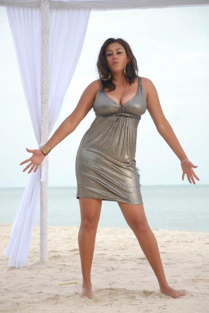 South Indian Actress Namitha Stills from Billa Movie