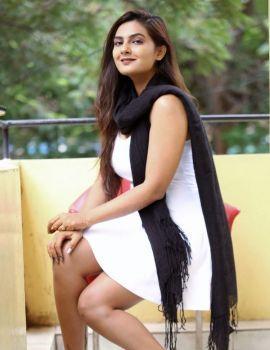 Neha Deshpande at IPC Section Bharya Bhandu Press Meet