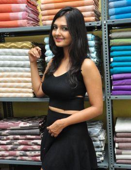 Neha Deshpande Inaugurates Pochampally IKAT Art Mela