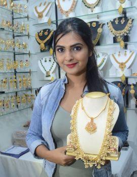 Telugu Actress Neha Deshpande Stills at Silk India Expo 2017