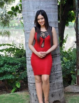 Actress Nikesha Patel Red Dress Photoshoot Stills