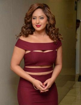 Nikesha Patel at Kotikokkadu Audio Launch