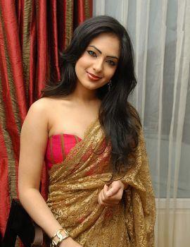Telugu Actress Nikesha Patel in Designer Saree