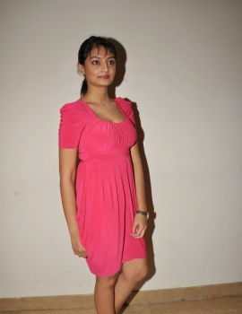 Nikitha Narayan in Pink Dress at Pizza 2 Villa Audio Release Event