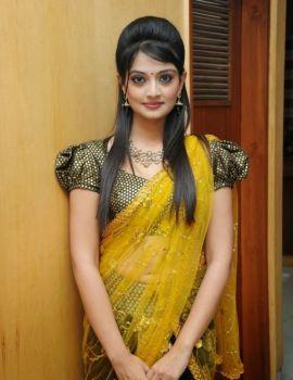 Nikitha Narayan Photos in Saree at Varna Audio Launch