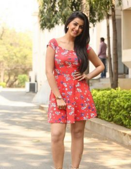 Nikki Galrani Stills at Malupu Movie Release Date Press Meet