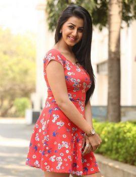 Nikki Galrani Stills at Malupu Movie Release Date Press Meet