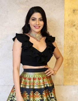 Actress Nikki Tamboli Photos at Thippara Meesam Movie Pre Release Event
