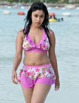 Payal Ghosh in Bikini at Mr. Rascal Movie