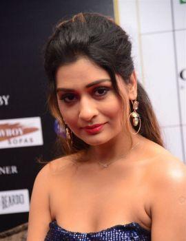 Payal Rajput stills at Dadasaheb Phalke Awards South 2019 Red Carpet