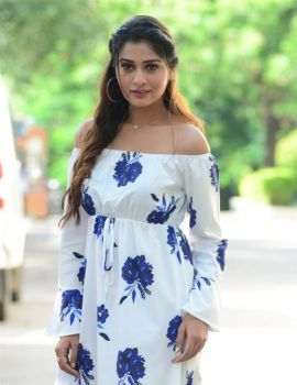 Telugu Actress Payal Rajput Pics at RDX Love Movie Trailer Launch