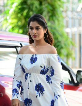 Telugu Actress Payal Rajput Pics at RDX Love Movie Trailer Launch