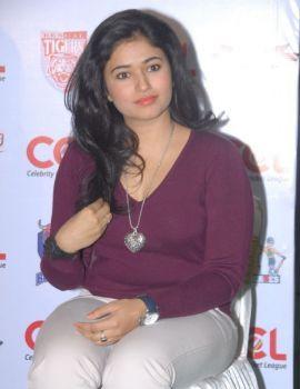 Poonam Bajwa Stills from CCL 2012 Press Meet