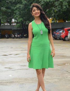 Poonam Kaur Photos at Pranayam Movie Launch