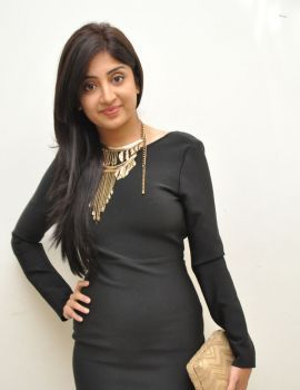 Poonam Kaur Photos from Thikka Movie Audio Launch