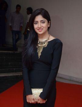 Poonam Kaur Photos from Thikka Movie Audio Launch
