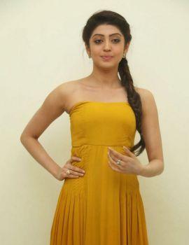 Pranitha Stills at Alludu Seenu Audio Launch