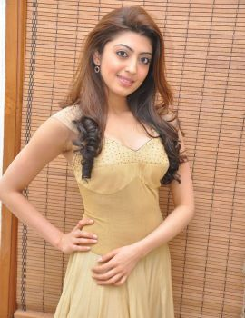 Pranitha Subhash at Pandavulu Pandavulu Tummeda Audio Release Function