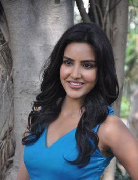 Priya Anand Stills at Arima Nambi Movie Press Meet