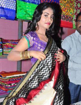 Priyanka Augustin Photos at Pochampally IKAT Art Mela Launch