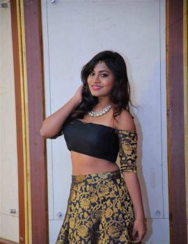 Priyanka Augustin Roshini C/O Thoorpu Gadhi Movie Audio Launch Stills