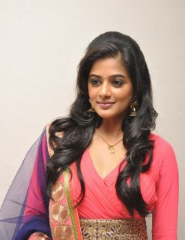 Priyamani Photos at Chandi Platinum Disc Function