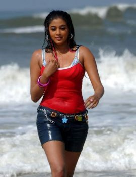 Telugu Actress Priyamani Stills in Raaj Movie