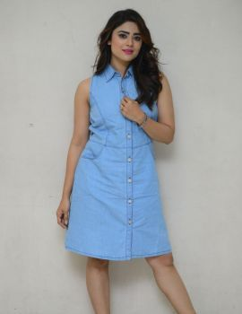 Priyanka Sharma at Savaari Movie Trailer Launch