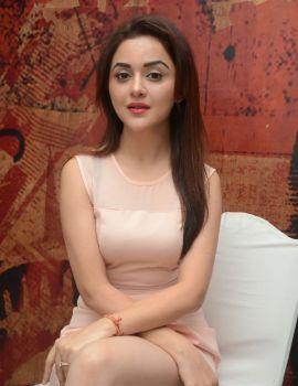 Ragini Nandwani Stills at Siddhartha Movie Success Meet