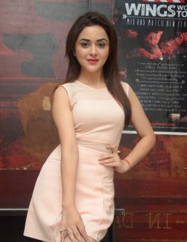 Ragini Nandwani Stills at Siddhartha Movie Success Meet