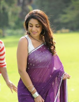 Beautiful South Indian Actress Richa Gangopadhyay in Saree
