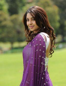 Beautiful South Indian Actress Richa Gangopadhyay in Saree