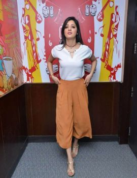 Richa Panai at Eedu Gold Ehe Promotions At Radio City