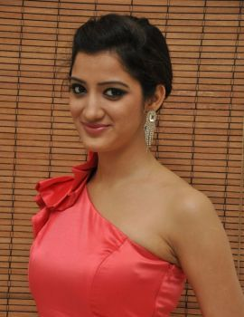 Richa Panai Stills at Basthi Audio Release
