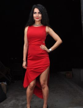Telugu Actress Ritu Sachdev at Boom Boom Audio Release Function