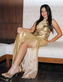 Rozlyn Khan Birthday Party Celebration Stills