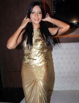 Rozlyn Khan Birthday Party Celebration Stills
