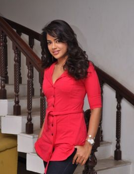 Sameera Reddy Stills in Pink Dress at Vedi Press Meet