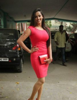 Sanjana Singh Photos in Red Dress at Meaghamann Movie Success Meet