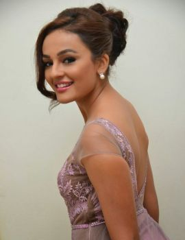 Seerat kapoor at Tiger Movie Audio Launch