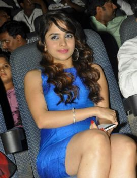 Sheena Shahabadi Stills in Blue Dress at Action 3D Audio Release