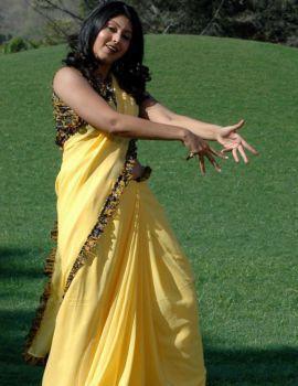 Actress Sheryl Pinto Yellow Saree Stills