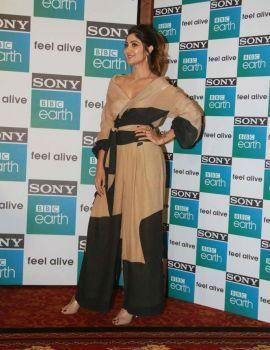 Shilpa Shetty Stills at Sony BBC Earth 1st Anniversary Celebrations