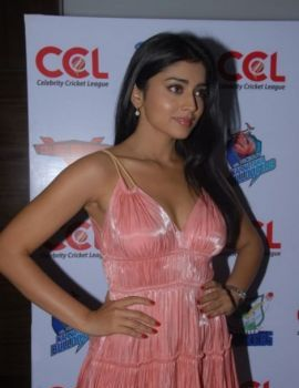 Actress Shriya Saran at CCL 2012 Press Meet