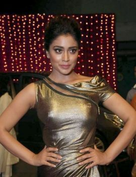 Shriya Saran at Telugu Apsara Awards 2017