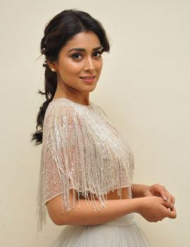 Shriya Saran - Sizzling Hot South Indian Actress