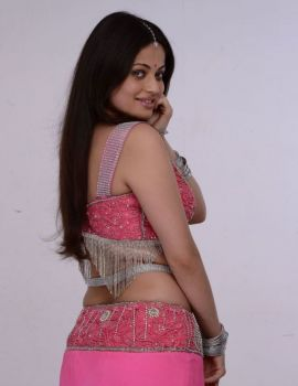 Sneha Ullal Hot Photoshoot Stills