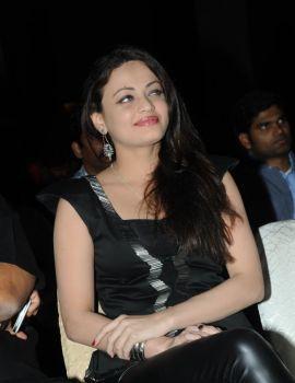Sneha Ullal in Black Dress at TSR Crescent Cricket Cup 2013 Curtain Raiser