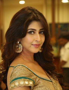 Sonarika Bhadoria Stills at Eedo Rakam Aado Rakam Audio Launch