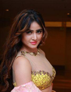 Actress Sony Charishta at Khwaish Curtain Raiser Event